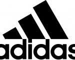 Basket Adidas, la chaussure de sport pour tous